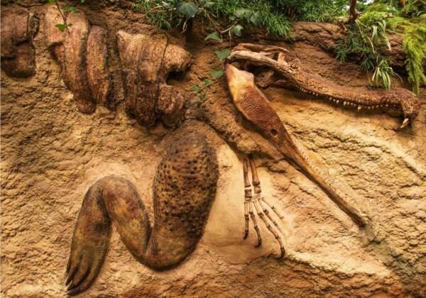 que animales extintos podrían volver a la vida